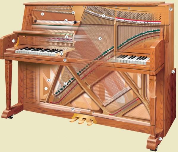 Piano Glossary - Steinway Piano Gallery of Naples